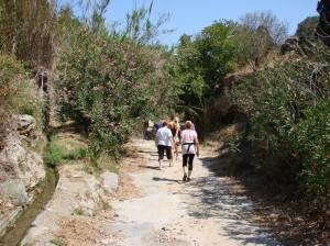 Elixos_trail